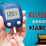 Cara ampuh mengobati diabetes propolis brazillian