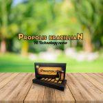 Manfaat Propolis Di Bulan Ramadhan Bagi Kesehatan