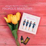 Bahaya Dan Cara Hilangkan Keputihan Dengan Propolis Brazillian
