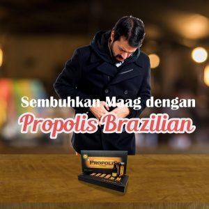 Mengobati Maag Dengan Propolis Brazillian