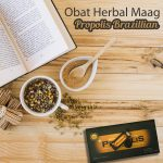 Obat Herbal Maag Propolis Brazillian