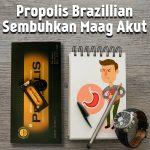 Propolis Brazillian Sembuhkan Maag Akut