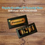 Propolis sebagai Antioksidan yang sangat terbukti