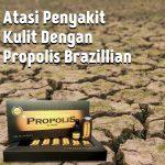 Atasi Penyakit Kulit Dengan Propolis Brazillian