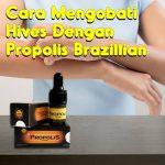 Cara Mengobati Hives Dengan Propolis Brazillian
