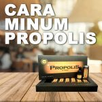 Cara Minum Propolis Brazilian