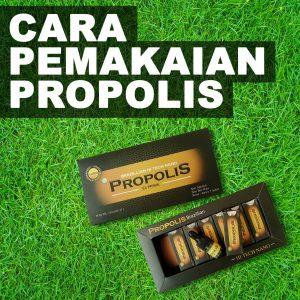 Cara Pemakaian Propolis Prazilian