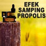 Efek Samping Propolis Brazillian