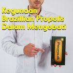 Kegunaan Brazillian Propolis Dalam Mengobati