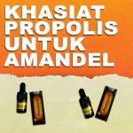 Khasiat Propolis Brazillian Untuk Amandel