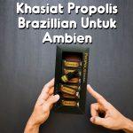 Khasiat Propolis Brazillian Untuk Ambien