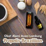 Obat Alami Asam Lambung Propolis Brazillian