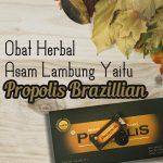 Obat Herbal Asam Lambung Propolis Brazillian