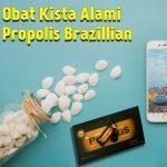 Obat Kista Alami Propolis Brazillian