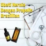 Obati Hernia Dengan Propolis Brazillian