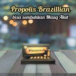 Propolis Brazillian Bisa Sembuhkan Maag Akut