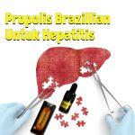 Propolis Brazillian Untuk Hepatitis