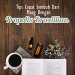 Tips Cepat Sembuh Dari Maag Dengan Propolis