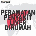 Cara Mengobati Penyakit Liver Dengan Propolis Brazillian