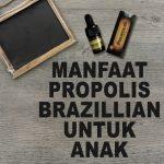 Manfaat Propolis Brazillian Untuk Anak