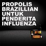 Manfaat Propolis Brazillian Untuk Influenza