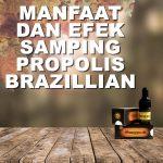 Manfaat Propolis Brazillian dan Efek Sampingnya