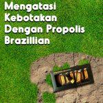 Mengatasi Kebotakan Dengan Propolis Brazillian