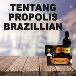 Tentang Propolis Brazillian