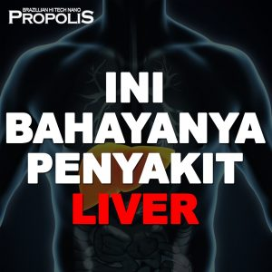 Propolis brazillian apa bahaya penyakit liver