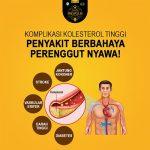 Komplikasi Kolesterol Tinggi WAJIB Anda Tahu!